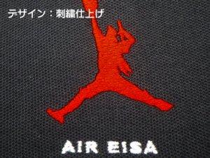 AIR EISA 刺繍 ボタンダウンポロシャツ