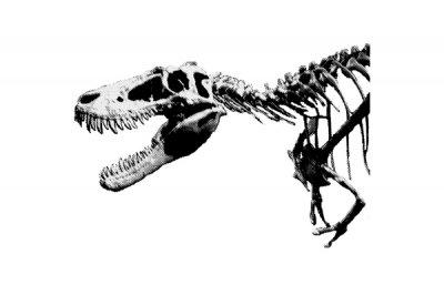 恐竜 ティラノサウルス Tシャツ