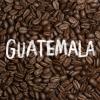 【200g】 グアテマラ ウエウエテナンゴ コンポステラ
