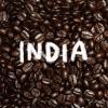 【200g】 インド APAA ブルックリン農園