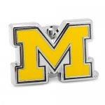 NCAA ミシガン大学 ミシガン ウルヴァリンズ ピンズ ラペルピン