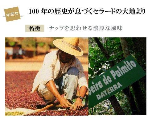 【ブラジル】ボンジャルディン農園(中煎り)200g