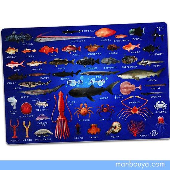 【A4サイズ下敷き】深海魚グッズ◆おもしろ文房具◆図鑑したじき◆ザ・アクセス◆深海大全