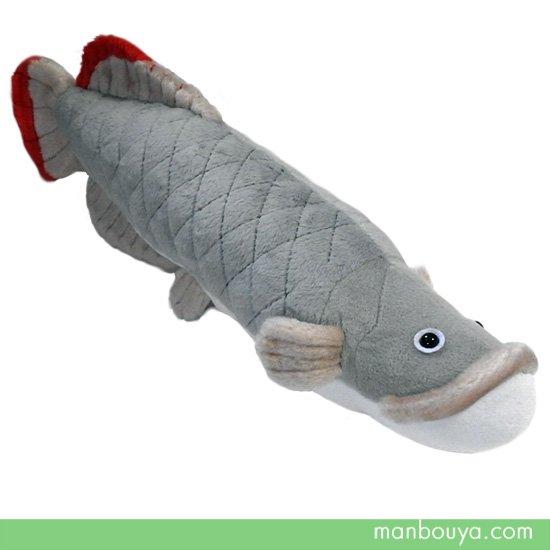 【お魚グッズ】ピラルクぬいぐるみ◆A-SHOW(栄商)◆淡水魚ピラルクMサイズ42cm
