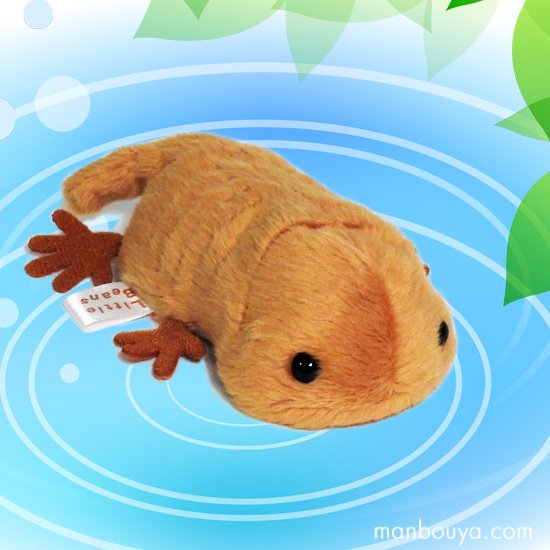 【サンショウウオのぬいぐるみ】グッズ/雑貨◆A-SHOW◆Little Beans(リトルビーンズ)◆山椒魚10cm
