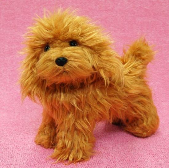 【犬のぬいぐるみ】トイプードル/雑貨◆A-SHOW(栄商)◆テディベアカットトイプードル◆レッド/アプリコット20cm