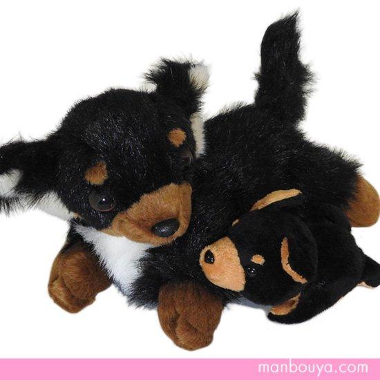 ぬいぐるみ 犬 チワワ グッズ 雑貨 A-SHOW チワワ ブラック&タン セット