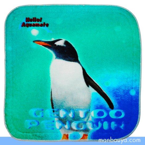 ペンギン グッズ タオルハンカチ 水族館お土産 新居田物産 ハローアクアリウム ジェンツーペンギン 19×19cm