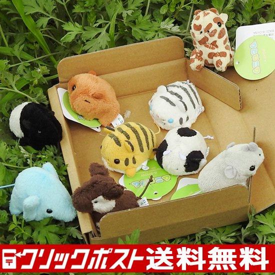 動物園 雑貨 ぬいぐるみ セット A-SHOW ムニュマムお手玉 箱詰めセット ワイルドアニマル 9個