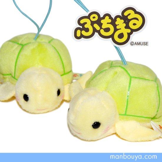 カメ ぬいぐるみ 亀 グッズ アミューズ AMUSE ぷちまる 水族館 ウミガメ 6cm