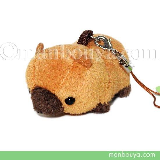 動物 ヤブイヌ ぬいぐるみ ブッシュドッグ 動物園 A-SHOW ムニュマム 携帯ストラップ やぶいぬ 6cm