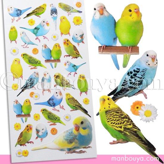インコ グッズ かわいい シール ステッカー 小鳥 雑貨 マインドウェイブ フォトシリーズシール セキセイインコ