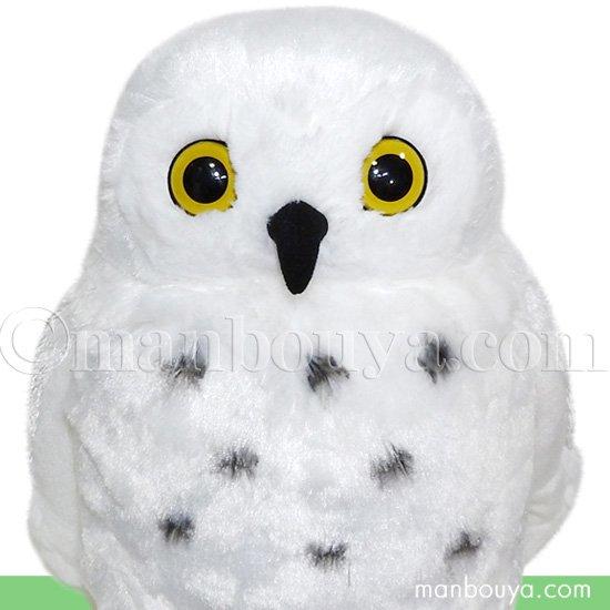 フクロウ グッズ  ぬいぐるみ 白ふくろう 雑貨 キュート販売 CUTE forest angel シロフクロウ L 31cm
