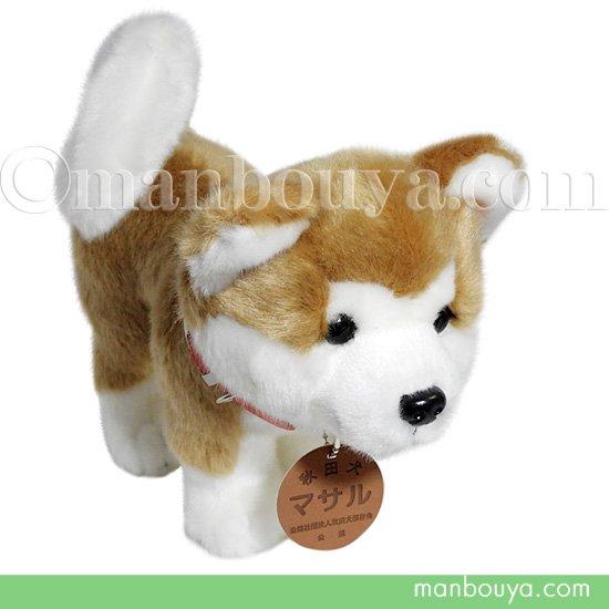 秋田犬 マサル ぬいぐるみ キュート販売 CUTE あきたいぬ 立ちポーズ Mサイズ 28cm