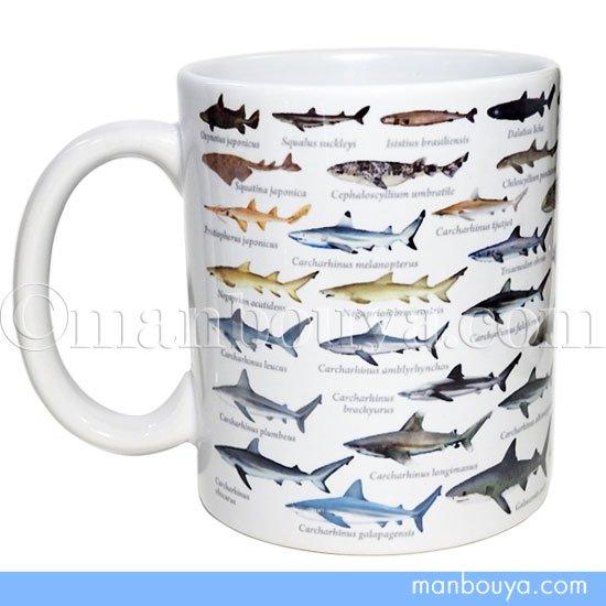 サメ グッズ 雑貨 プレゼントに ザ・アクセス 陶磁器 マグカップ 鮫大全