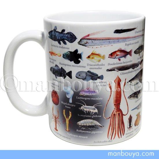 深海生物 グッズ 雑貨 プレゼントに ザ・アクセス 陶磁器 マグカップ 深海大全