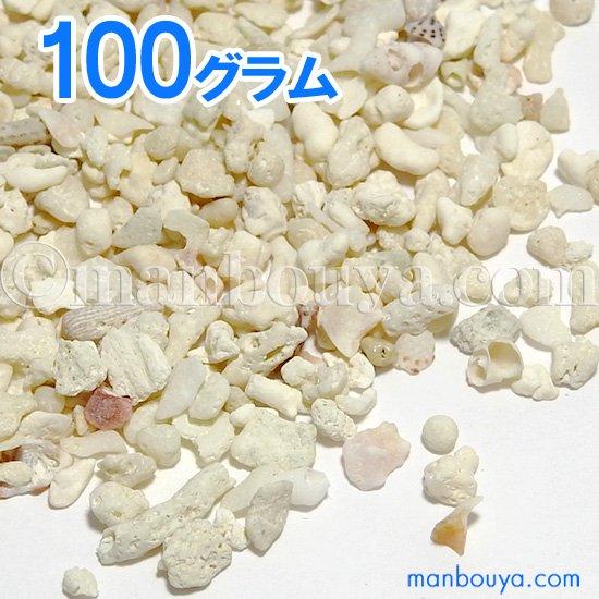 サンゴ砂 インテリア ハンドメイド素材 珊瑚砂 100グラム