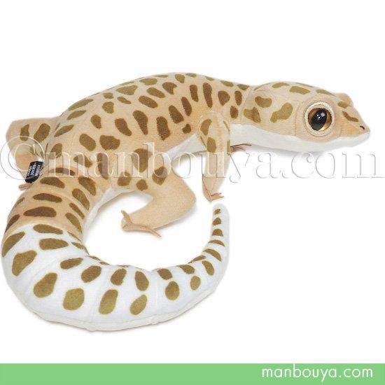 トカゲ ぬいぐるみ レオパードゲッコー 爬虫類 A-SHOW リアルヒョウモントカゲモドキ 45cm
