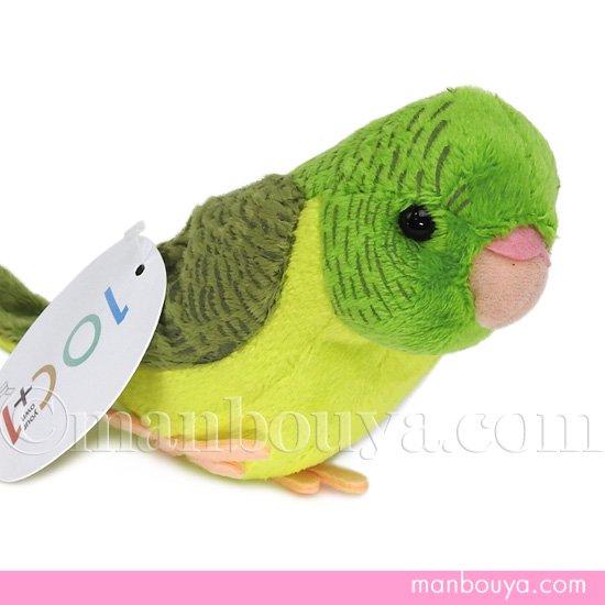 インコ ぬいぐるみ 小鳥 雑貨 TST 101 サザナミインコ グリーン 18cm