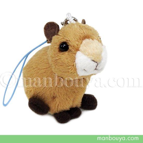 カピバラ ぬいぐるみ 動物 スマホ 携帯 液晶クリーナー ストラップ マスコット  キュート販売 CUTE かぴばら 5cm