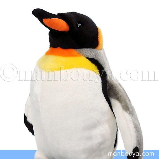 オウサマペンギン ぬいぐるみ 水族館 グッズ キュート販売 CUTE オオサマペンギン くちばしオレンジ M 31cm