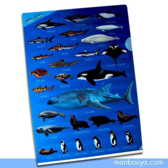 【A4クリアファイル】サメ・ペンギン・イルカ・シャチなど◆海の仲間がいっぱい◆水族館の人気者
