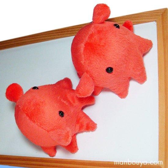 【メンダコのぬいぐるみ】A-SHOW(栄商)◆深海魚シリーズ◆メンダコマグネットレッド8cm