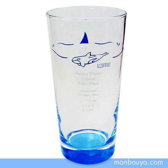 【シャチグッズ】グラス/ガラス製コップ◆サンセラ工芸◆マリンサイエンス◆ビアグラス