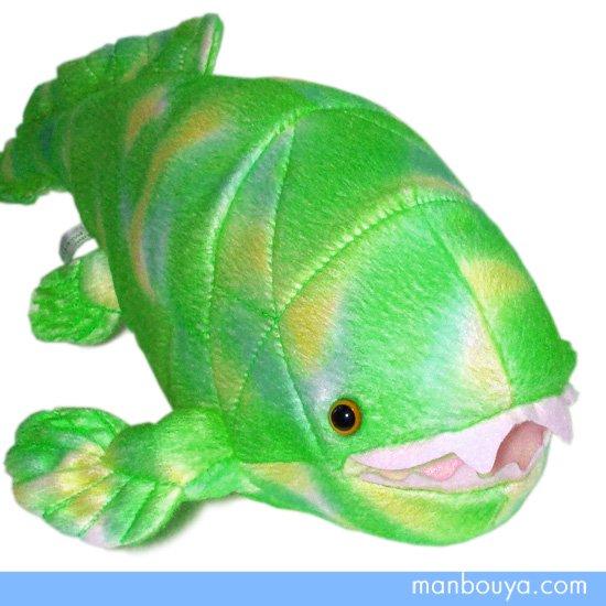 【ダンクルオステウス】ぬいぐるみ・グッズ◆A-SHOW(栄商)◆古代の海洋生物◆ダンクレオステウス37cm