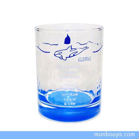 【シャチグッズ】グラス/ガラス製コップ◆サンセラ工芸◆マリンサイエンス◆オールドタンブラー