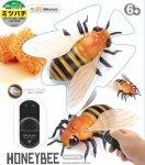 走る!!昆虫シリーズ �ミツバチ