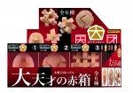 木製立体パズル 大天才の赤箱 (6種類セット)