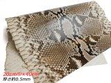 【切り革】ダイヤモンドパイソン ナチュラル 20cm巾×40cm 約0.5mm 1枚