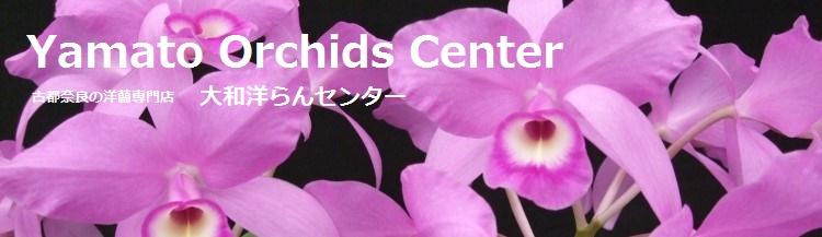 古都奈良の洋蘭専門店 『大和洋らんセンター』
