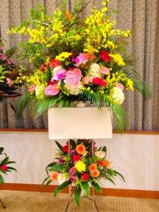 お祝生花スタンド2段「スタンダード 特大」