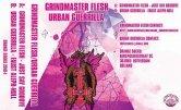 Grindmaster Flesh / Urban Guerrilla - Untitled [Orange Socks]