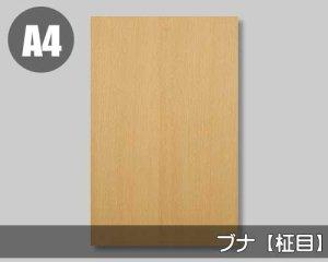 【ブナ柾目】A4サイズ(和紙貼り/糊なし)天然木ツキ板シート「ノーマルタイプ」