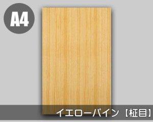 【イエローパイン柾目】A4サイズ(和紙貼り/糊なし)天然木のツキ板シート「ノーマルタイプ」