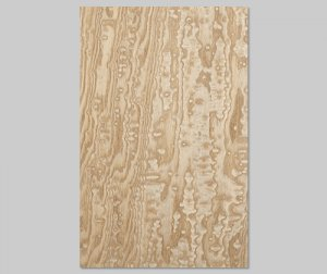 【タモ玉杢】A4サイズ(シール付き)天然木のツキ板シート「クイックタイプ」