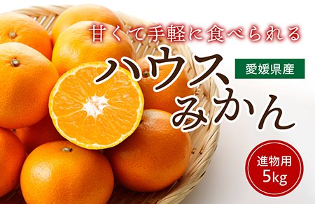 ハウスみかん【進物用】5� 約35〜50玉