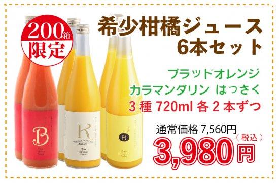 希少柑橘ジュースセット ブラッドオレンジ はっさく カラマンダリン 720ml×6