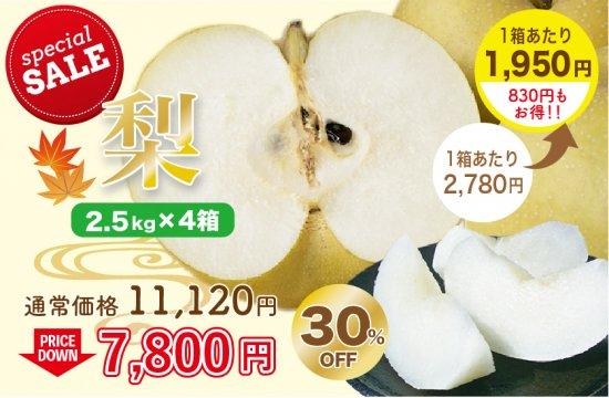 梨 2.5kg×4箱  約18~36玉
