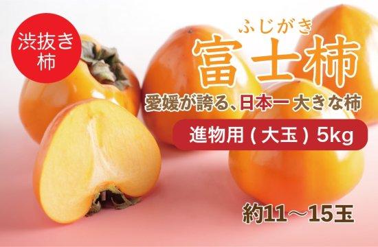 富士柿【進物用(大玉)】5kg 約11~15玉