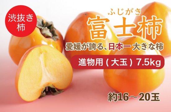 富士柿【進物用(大玉)】7.5kg 約16~20玉