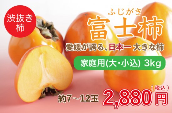 富士柿【家庭用(大・小込み)】3kg 約7~12玉