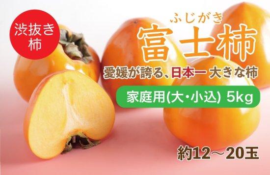 富士柿【家庭用(大・小込み)】5kg 約12~20玉