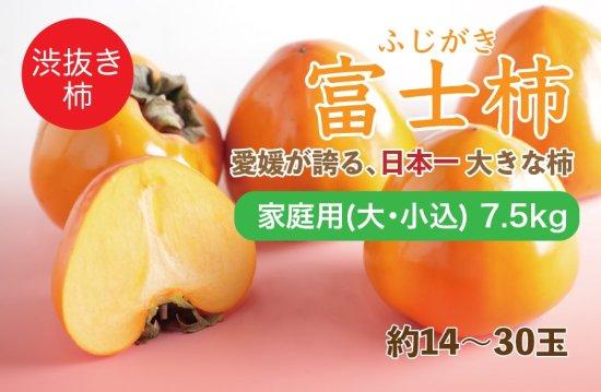 富士柿【家庭用(大・小込み)】7.5kg 約14~30玉