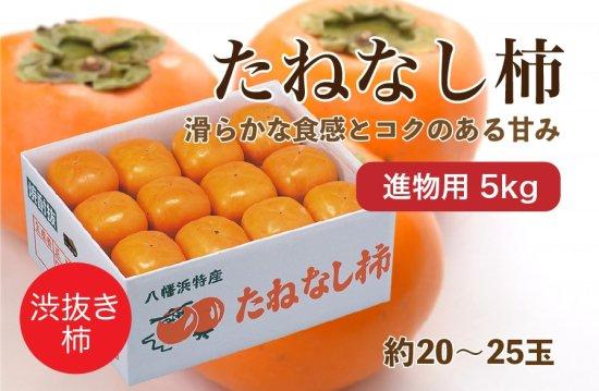 たねなし柿【進物用】5kg 約20~25玉