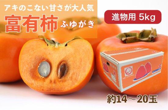 富有柿【進物用】5kg 約14~20玉