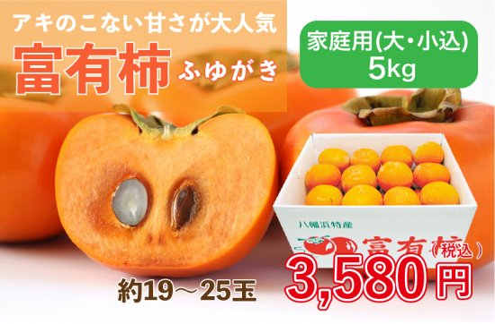 富有柿【家庭用(大・小込み)】5kg 約19~25玉